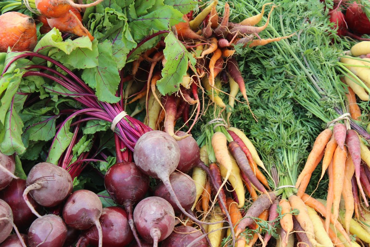 Join in foodcoop – new season!