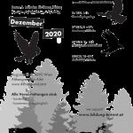 (sad) December Program